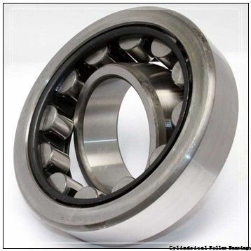 0.984 Inch | 25 Millimeter x 2.441 Inch | 62 Millimeter x 0.669 Inch | 17 Millimeter  CONSOLIDATED BEARING NJ-305  Cylindrical Roller Bearings