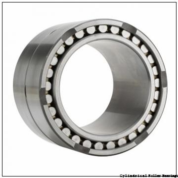 2.559 Inch | 65 Millimeter x 4.724 Inch | 120 Millimeter x 0.906 Inch | 23 Millimeter  CONSOLIDATED BEARING N-213E M C/3  Cylindrical Roller Bearings