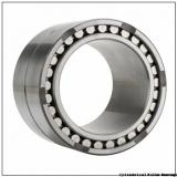 0.984 Inch | 25 Millimeter x 2.441 Inch | 62 Millimeter x 0.945 Inch | 24 Millimeter  CONSOLIDATED BEARING NUP-2305E M  Cylindrical Roller Bearings
