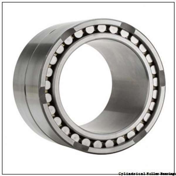 0.984 Inch   25 Millimeter x 2.441 Inch   62 Millimeter x 0.945 Inch   24 Millimeter  CONSOLIDATED BEARING NUP-2305E M C/4  Cylindrical Roller Bearings #3 image