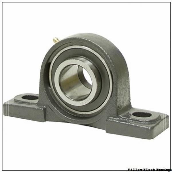 3.25 Inch   82.55 Millimeter x 4.646 Inch   118 Millimeter x 3.938 Inch   100.025 Millimeter  QM INDUSTRIES QVVSN19V304SM  Pillow Block Bearings #1 image